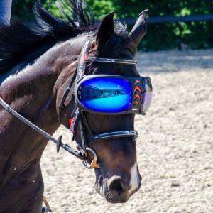 eQquick eVysor Mirrored Blue